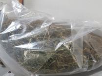 foin bio dépoussiéré foin de crau